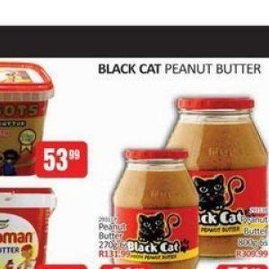 CAT at Kit Kat Cash&Carry