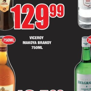 Brandy at Boxer Superstores